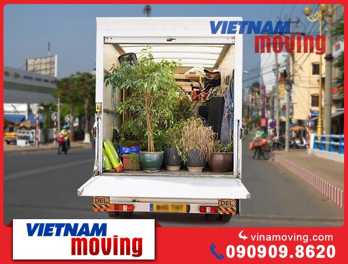 Hướng dẫn di dời chậu hoa cảnh khi dọn nhà và những lưu ý khi vận chuyển