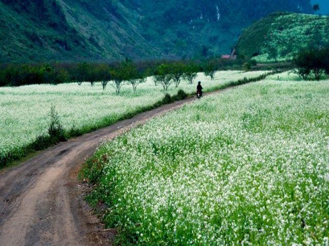 Từ TPHCM đi Sơn La bao nhiêu km?