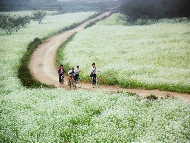 Từ Hà Nội đi Mộc Châu bao nhiêu km?