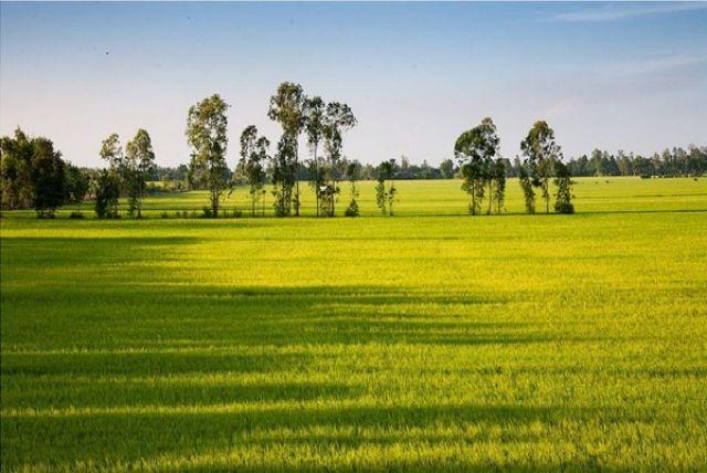 Từ Hà Nội đi Vĩnh Long bao nhiêu km?