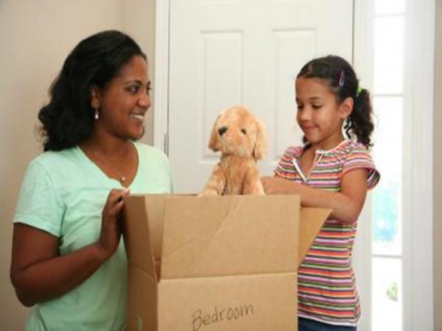 Cách chuyển nhà cùng thú nuôi an toàn